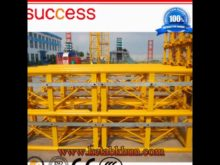 8t Hydraulic Crane Made in China by Success