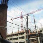 AmQuip  The Crane People