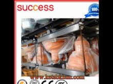 Chinese Construction Hoist Offered by Success