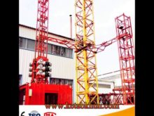 Hot Sale Self Raised Tower Crane