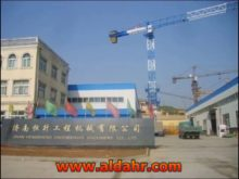Luffing Jib Crane with Max Load 6 Ton