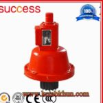 Machinery Crane Made in China by Success