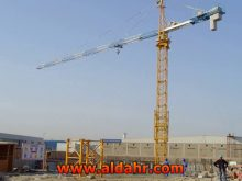 Tower Crane with Motor for Hot Sale QTZ31 5