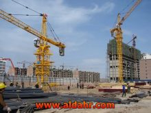 Tower Cranes Made in China, Self Erecting Tower Crane Qtz100 5613
